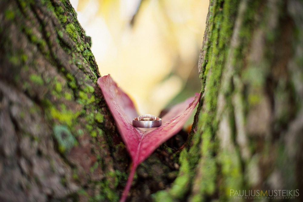 farm_wedding_photography_Madison_WI_by_Queens_And_Hearts_wedding_photography_jewelry_10052013-7446