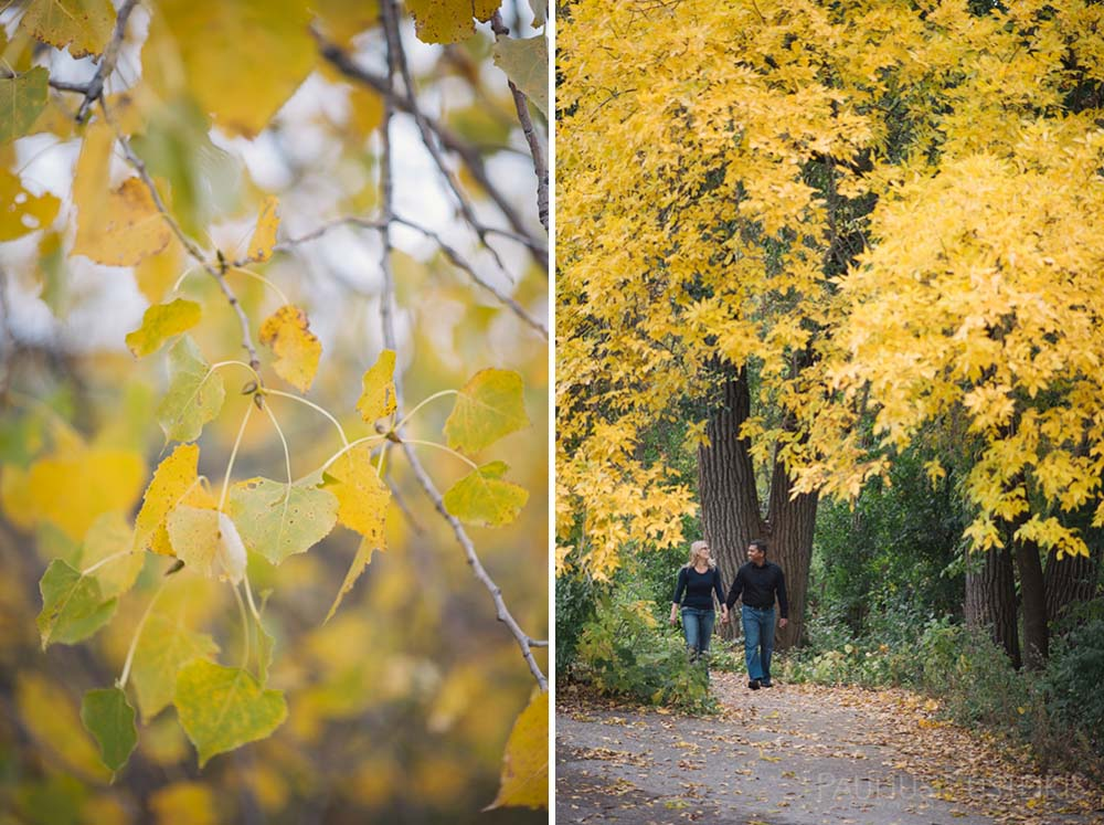 engagement_photography_Madison_WI_Queens_and_hearts_Sally_Sunil-0610