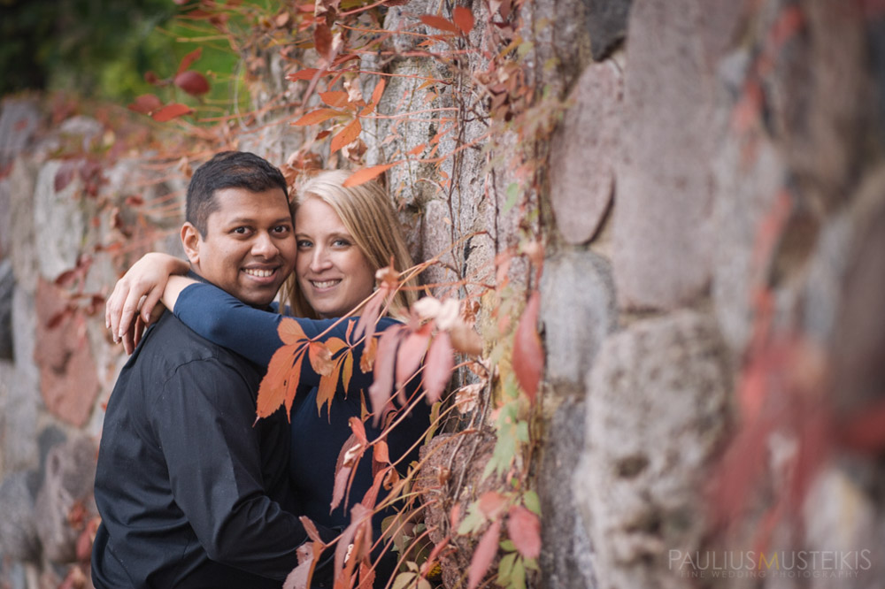 engagement_photography_Madison_WI_Queens_and_hearts_Sally_Sunil-0802