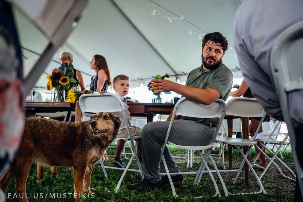 brother of the bride and family dog during the wedding reception