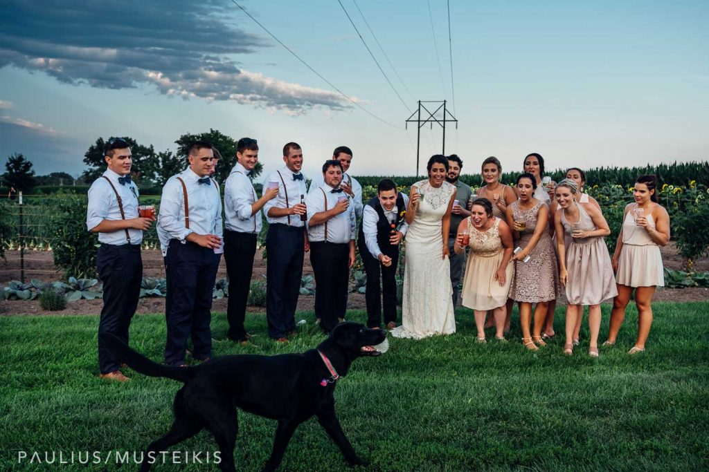 all bridal party is laughing while family dog is passing in front of the wedding photographer