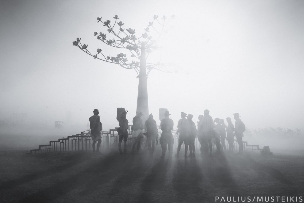 Burning Man wedding tip about dust storm whiteout in the desert